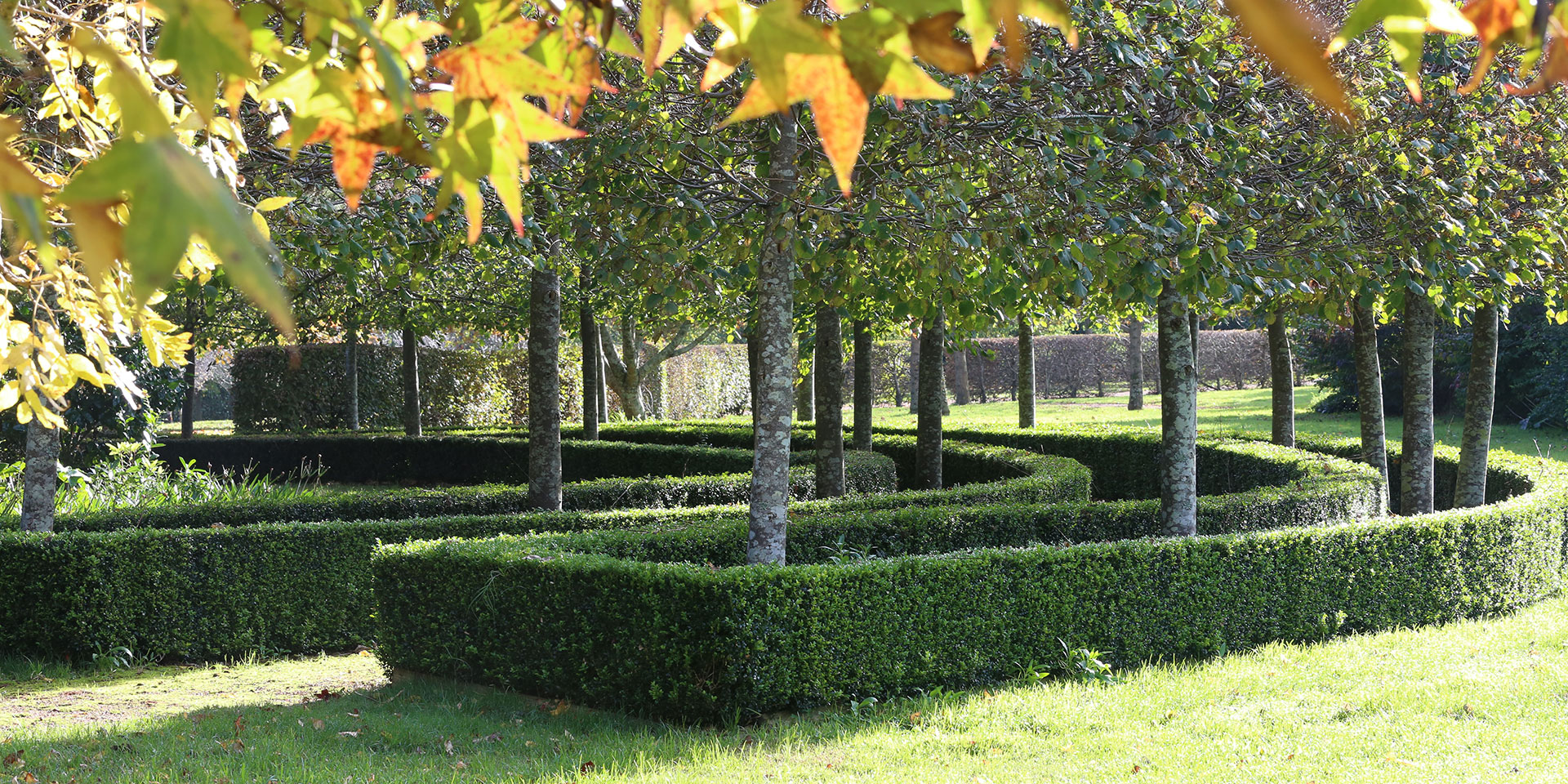 Bowral Garden Design | Jenny Rose-Innes