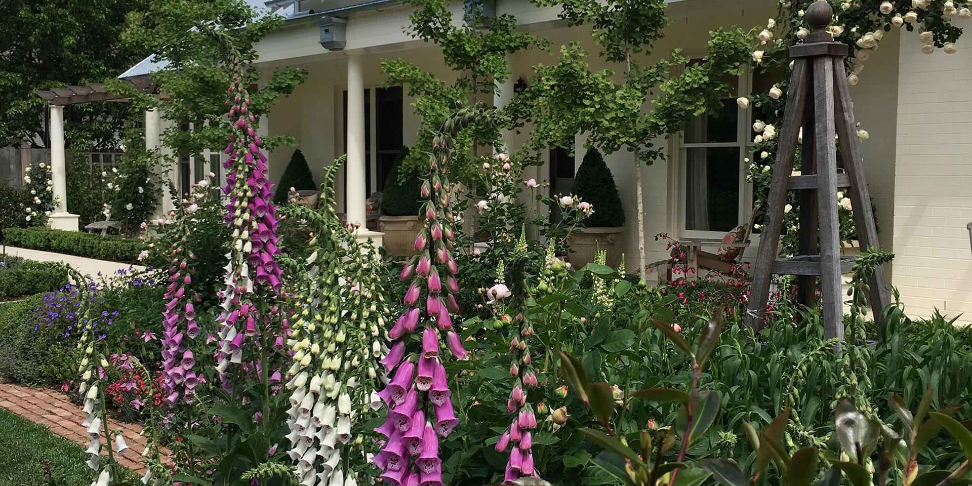 Garden Design Southern Highlands | Jenny Rose-Innes