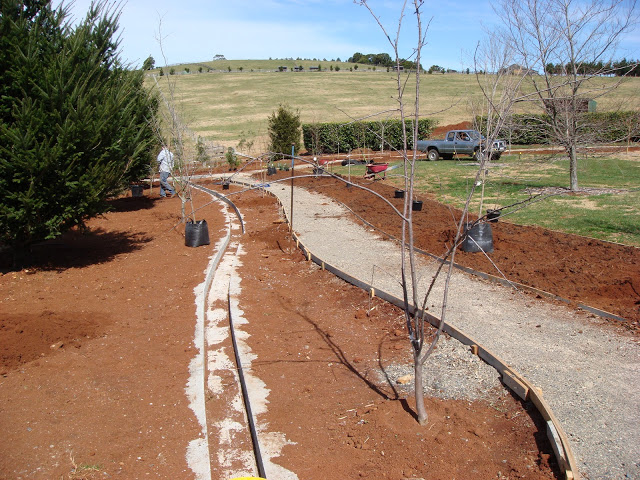 the-rill-06-the-rill-and-new-pathway